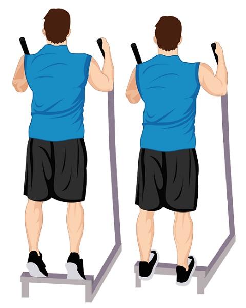 Illustrative Example of the Toe Raise Exercise