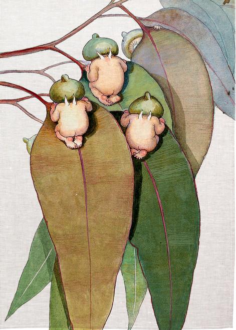 May Gibbs babies peering over the top of Gum leaves, Printed tea towel, MAYG133_KT
