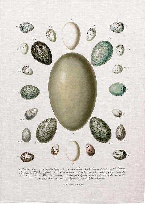 Assorted Egg designs printed on tea towel, Made in Australia