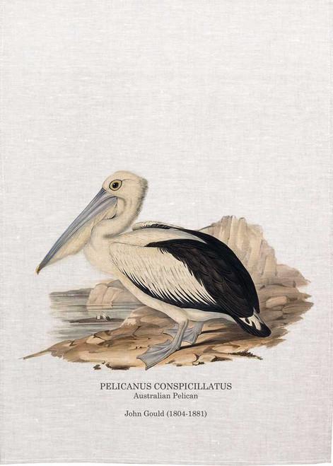 Australian Pelican, Pelicanus Conspicillantus, by John Gould printed on tea towel Made in Australia