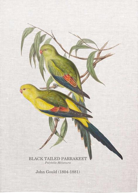 Black tailed Parrakeet, Polytelis Melanura  by John Gould  printed on tea towel Made in Australia