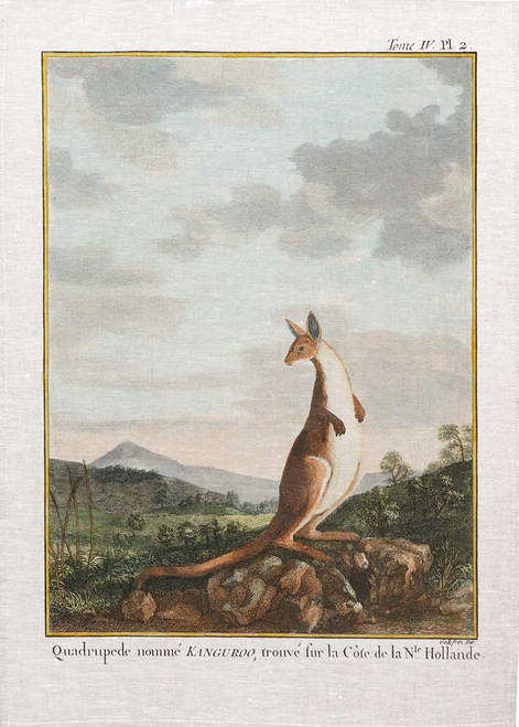 Vintage print of Kangaroo on a hill printed on tea towel, Made in Australia