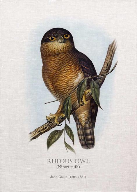 Rufous owl (Ninox rufa) Illustrated by John Gould (1804-1881) printed on tea towel Made in Australia