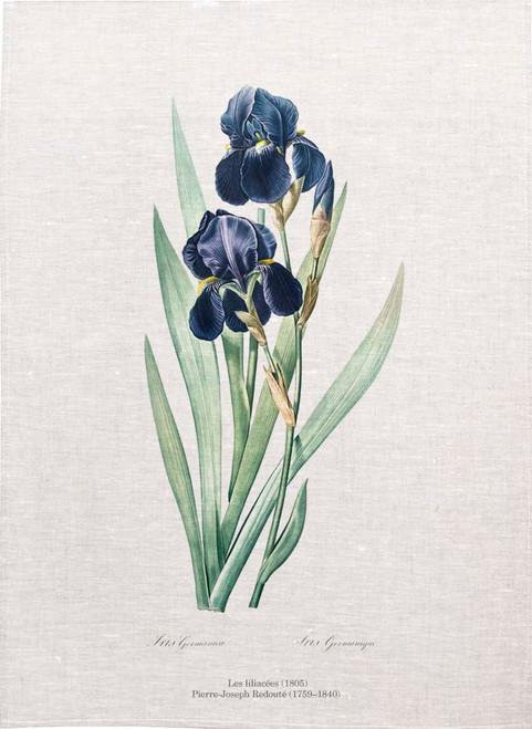 Joseph Redoute tea towel, German iris illustration, Printed in Australia