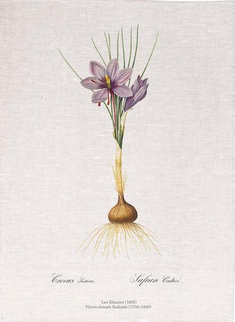 Pierre Joseph Redoute tea towel, Crocus sativus illustration, Made in Australia