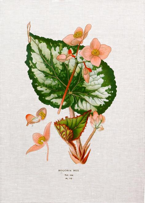 Flower Berg02  illustration on tea towel, Made in Australia
