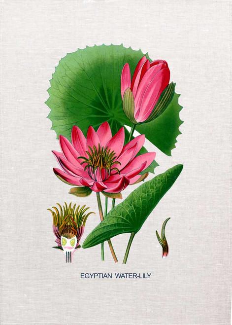 Egyptian Lily illustration on tea towel, Made in Australia
