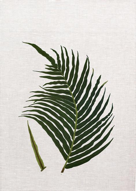 Fern06 vintage illustration tea towel, Made in Australia