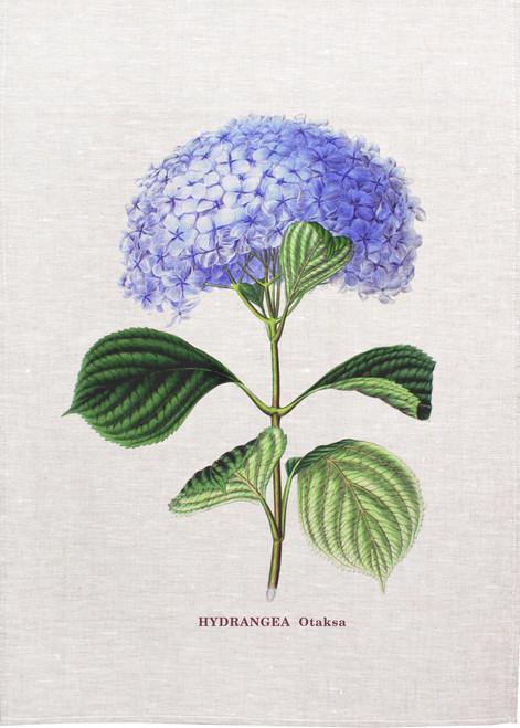 Hydrangea otaksa illustration on tea towel, Made in Australia