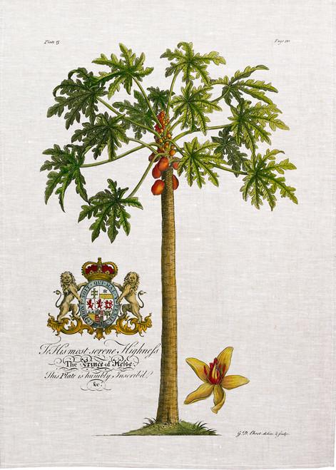 Palm80 - Paw Paw palm illustration printed on tea towel, Made in Australia