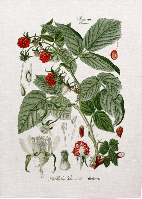Raspberries illustration printed on tea towel, made in Australia