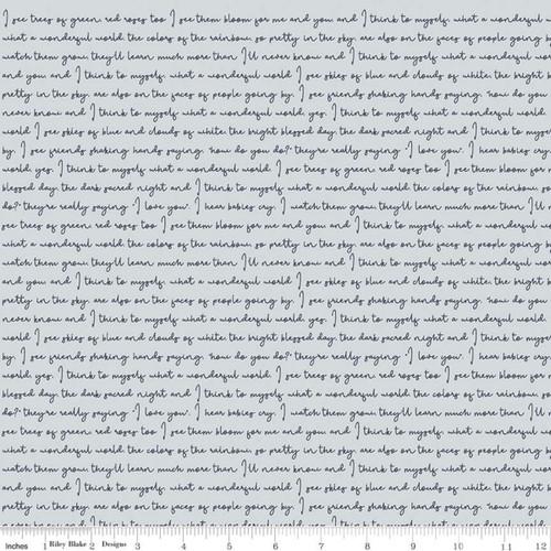 Text Mist - Gingham Foundry - My Mind's Eye - Riley Blake Fabrics