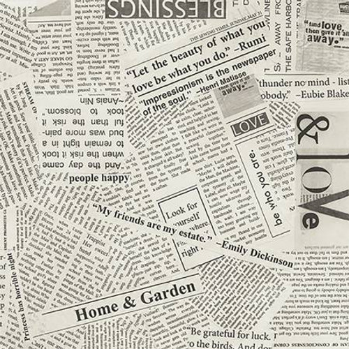 Windham Fabrics - Spackle News Paper Clipping - STory - Carrie Bloomston - WIDE BACK