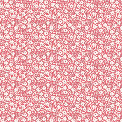Michael Miller Fabrics - Peach Sweet Nothings - Country Cottage - MMF Collection