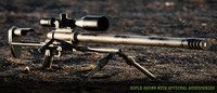 Business end of the Noreen ULR 50 BMG