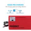 Tenergy Smart Universal Charger for NiMH battery Pack (2.4V - 7.2V)