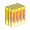 Tenergy Solla Rechargeable NiMH AAA Battery, 600mAh Solar Batteries Anti-Leak, Outdoor Durability, 5+ Years Performance, 12 PCS, UL Certified