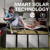 Tenergy Portable 60W Solar Panel