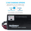 Combo: Tenergy NiMH 8.4V 3800mAh Battery Pack with Tamiya  + Charger (#01025)