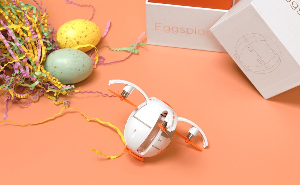 eggsplorer-a-.jpg