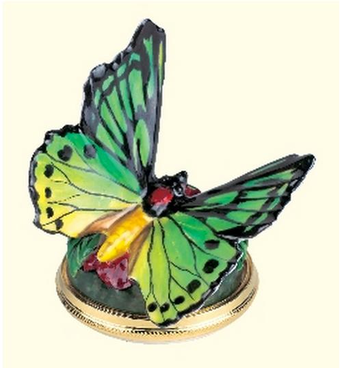 Staffordshire Papilio Bonbonniére