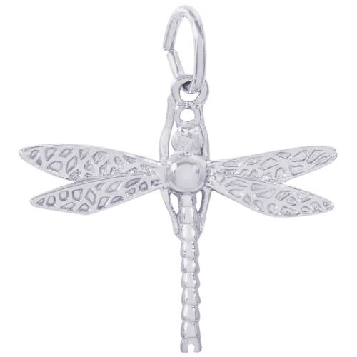 Rembrandt Charms Dragonfly