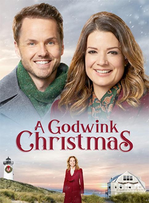 A Godwink Christmas (2018) DVD