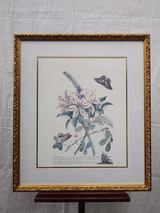 Gold framed print from Hotel Macdonald - Flowers and Butterflies