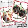 Happy Pawlidays // Holiday Card