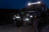 """Diode Dynamics 12"""" LED Light Bar White Flood (Pair)"""