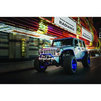 """Rigid Industries 10"""" Blue Backlight Radiance Plus"""