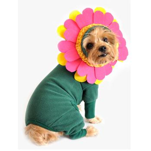 Updated Flower Pet Costume