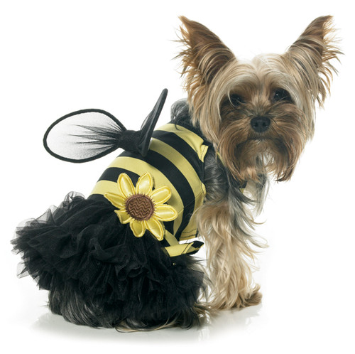 Daisy Bee Pet Costume