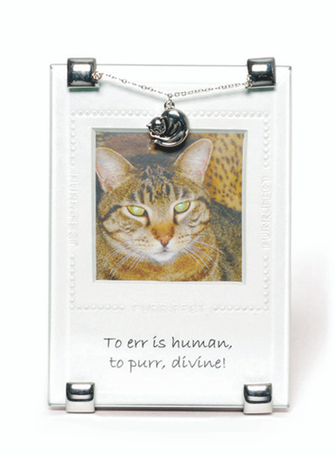 Divine Purr Quotable Frame