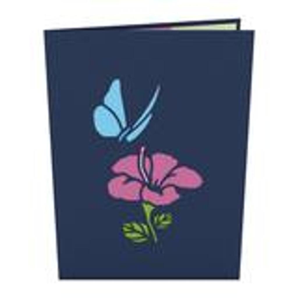 Pop-Up Card, Blue Morpho Butterfly