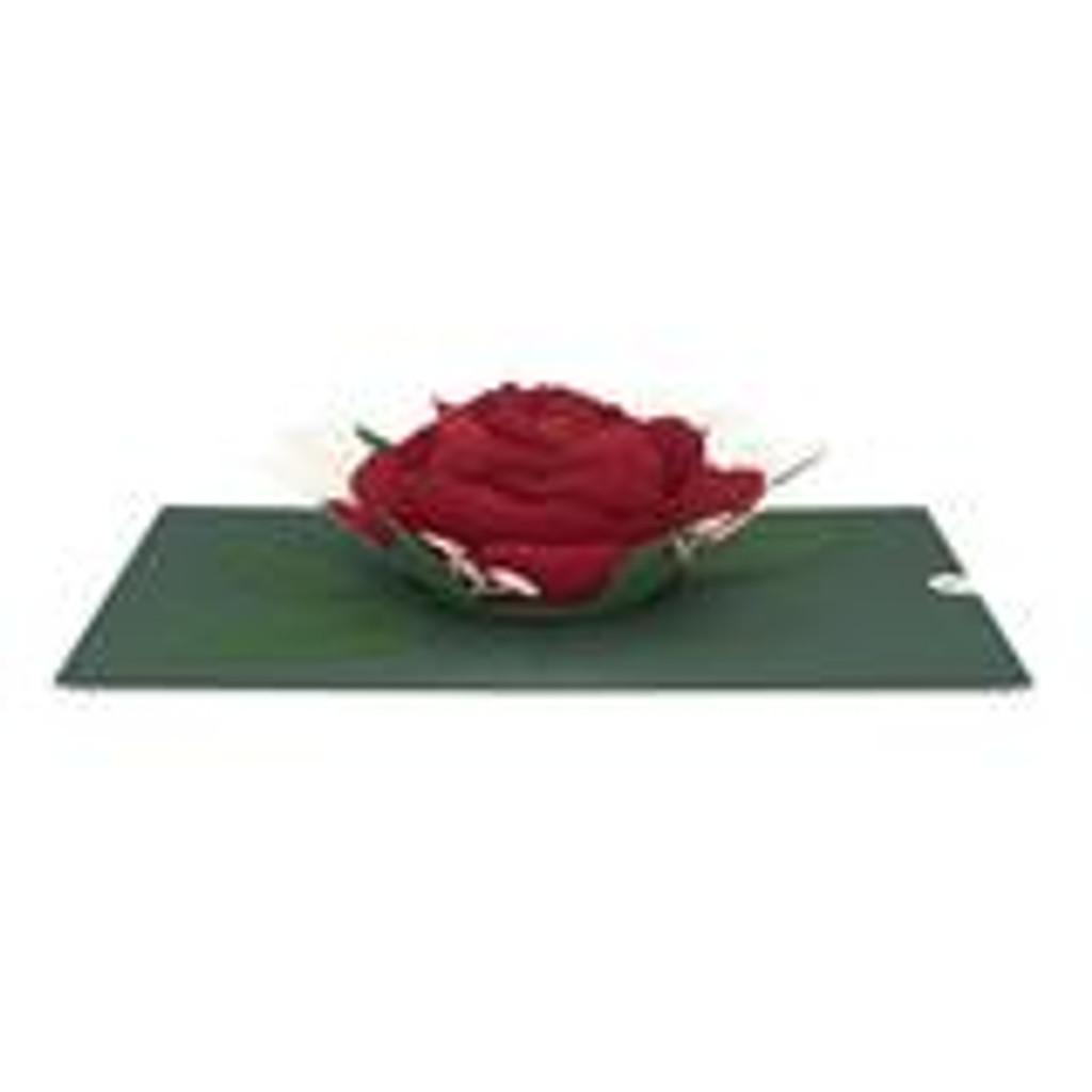 Pop-Up Card, Red Rose Bloom