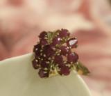 14k Gold Fifteen Ruby Ring