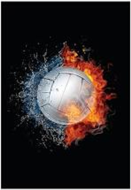 Boys Volleyball Camp