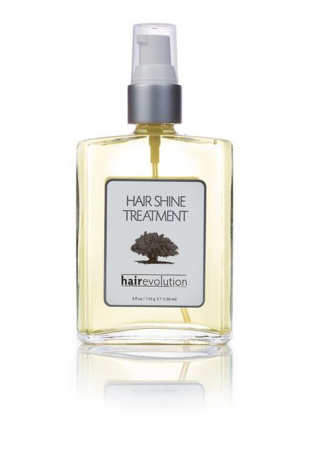 Hair Evolution Professional Argan Oil Hair Shine Treatment 4 oz