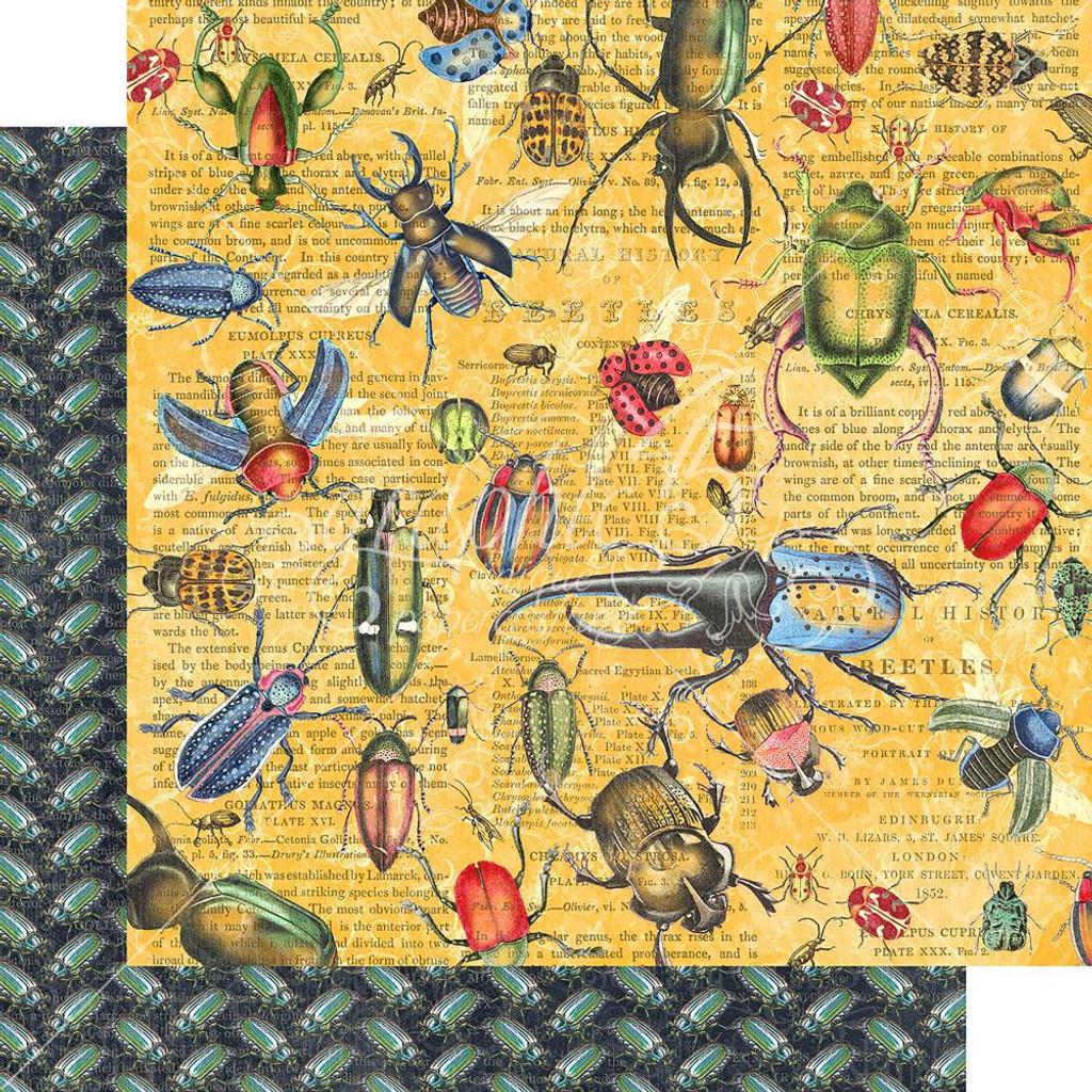 Graphic 45 - Flutter - Double sided 12x12 Paper - Serendipitous (FLU450 1769)