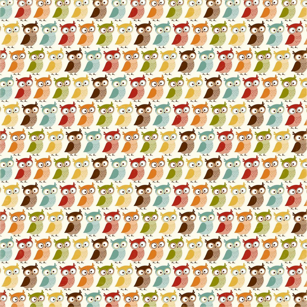 """Echo Park - Fall Is In The Air - Double -Sided Cardstock 12""""x12"""" - Thankful Owls (FIA112013)"""