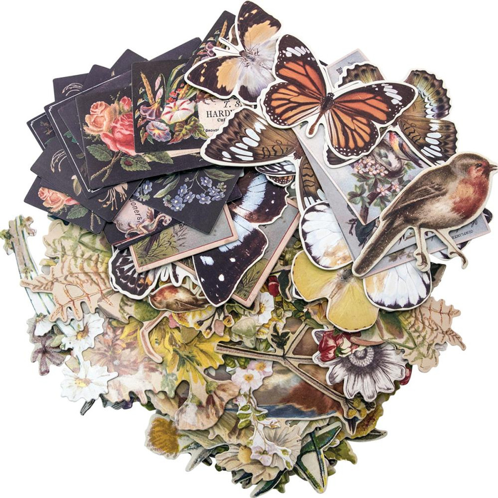 Tim Holtz - Idea-Ology - Ephemera Layers - Botanicals ( TH93554)