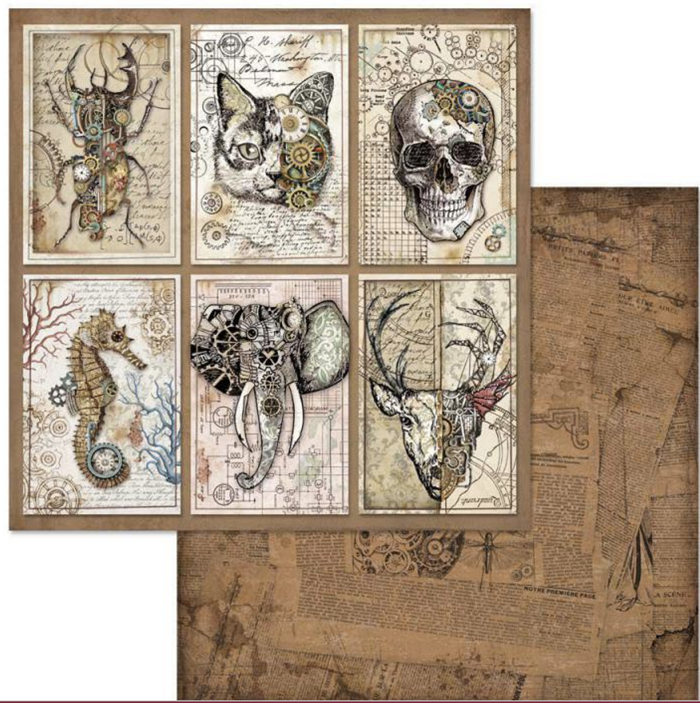 Stamperia - 12x12 Double-Sided Paper -  Mechanical Fantasy - Cards ( SBB609)