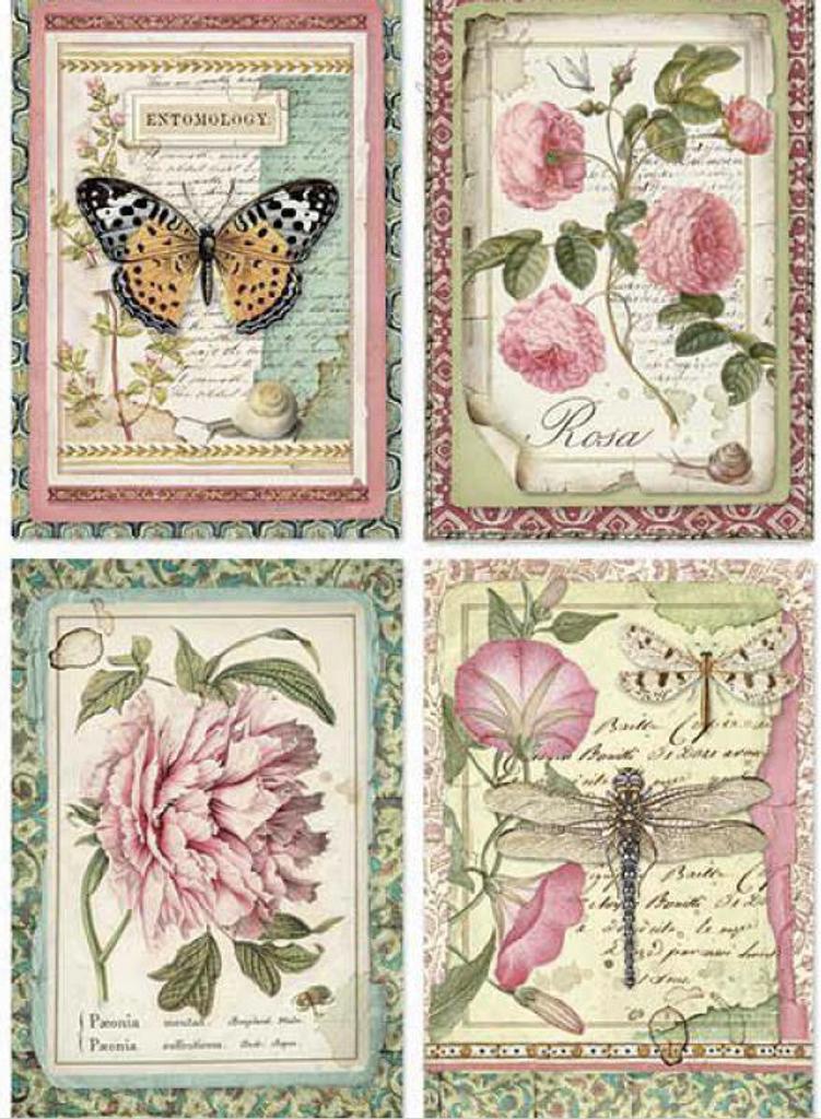 Stamperia - Decoupage Rice Paper A4 -Spring Botanic - Botanic Flower Cards (DFSA4361)