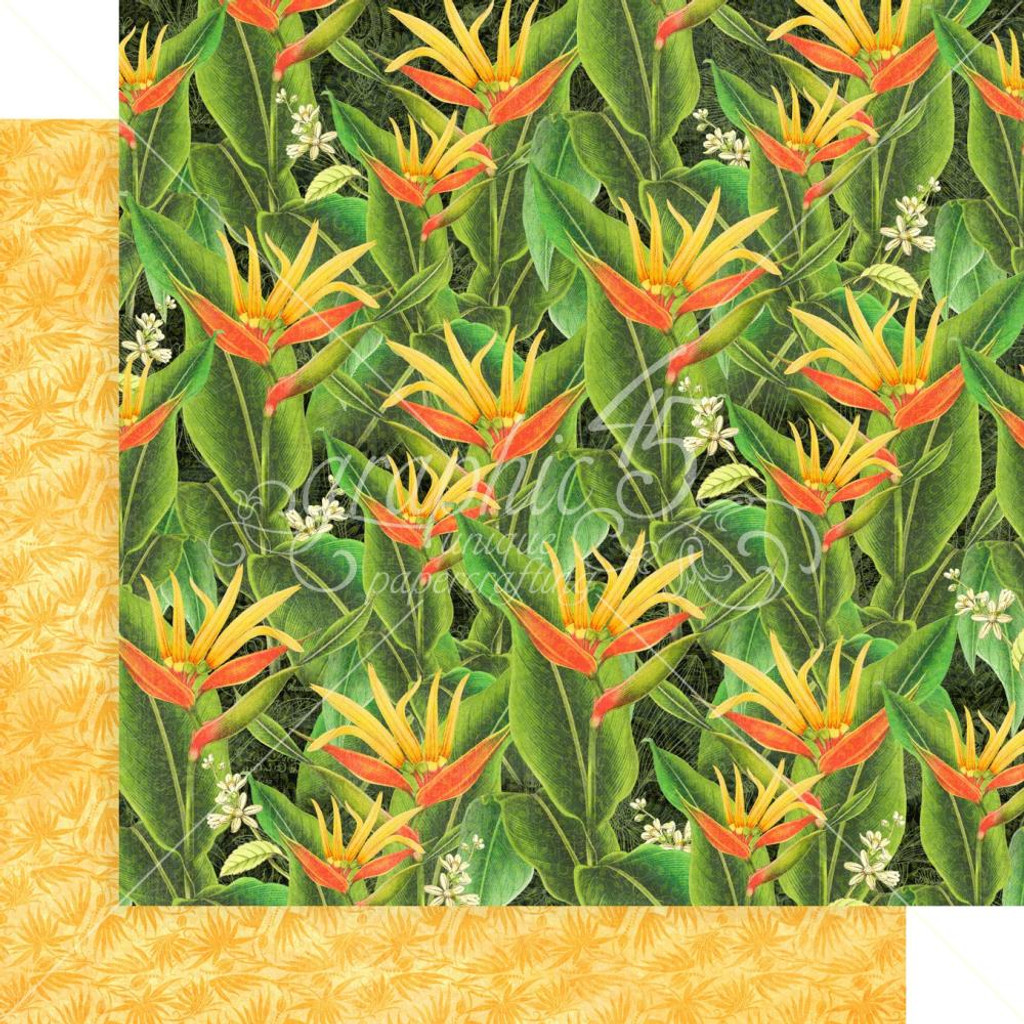 Graphic 45 - 12x12 Double Sided Paper- Lost In Paradise - Utopian Fields (LIP450 1891)