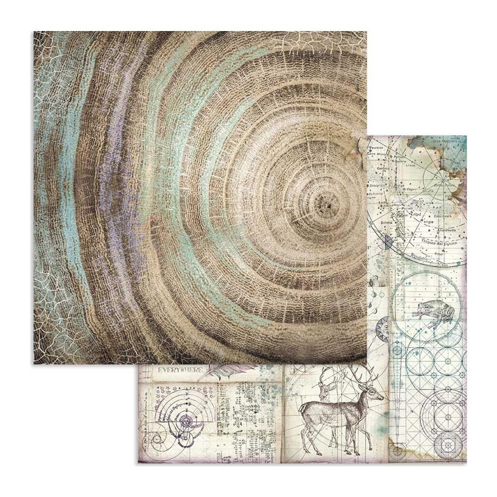 Stamperia - Double-Sided Cardstock 12x12 - Cosmos - Cosmos Knots (SBB616)