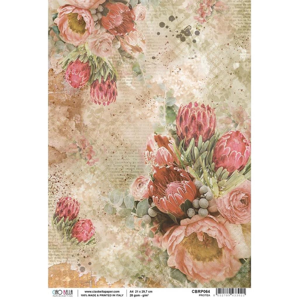 Ciao Bella - Decoupage Rice Paper Sheet - The Muse - Protea (CBRP064)