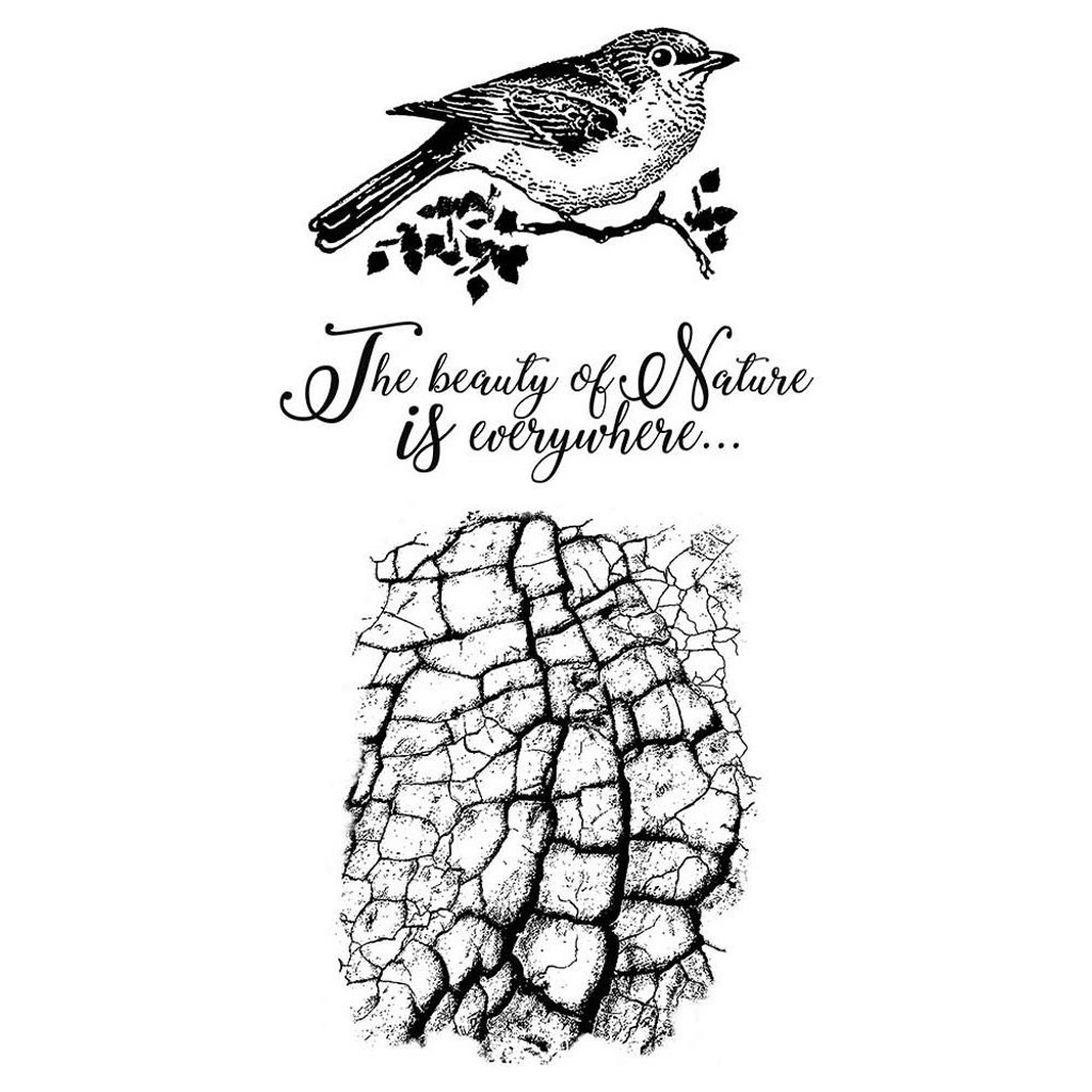 "Stamperia Cling Stamp 5.90""X7.87"" -  Cosmos Bird (WTKCCR02)"
