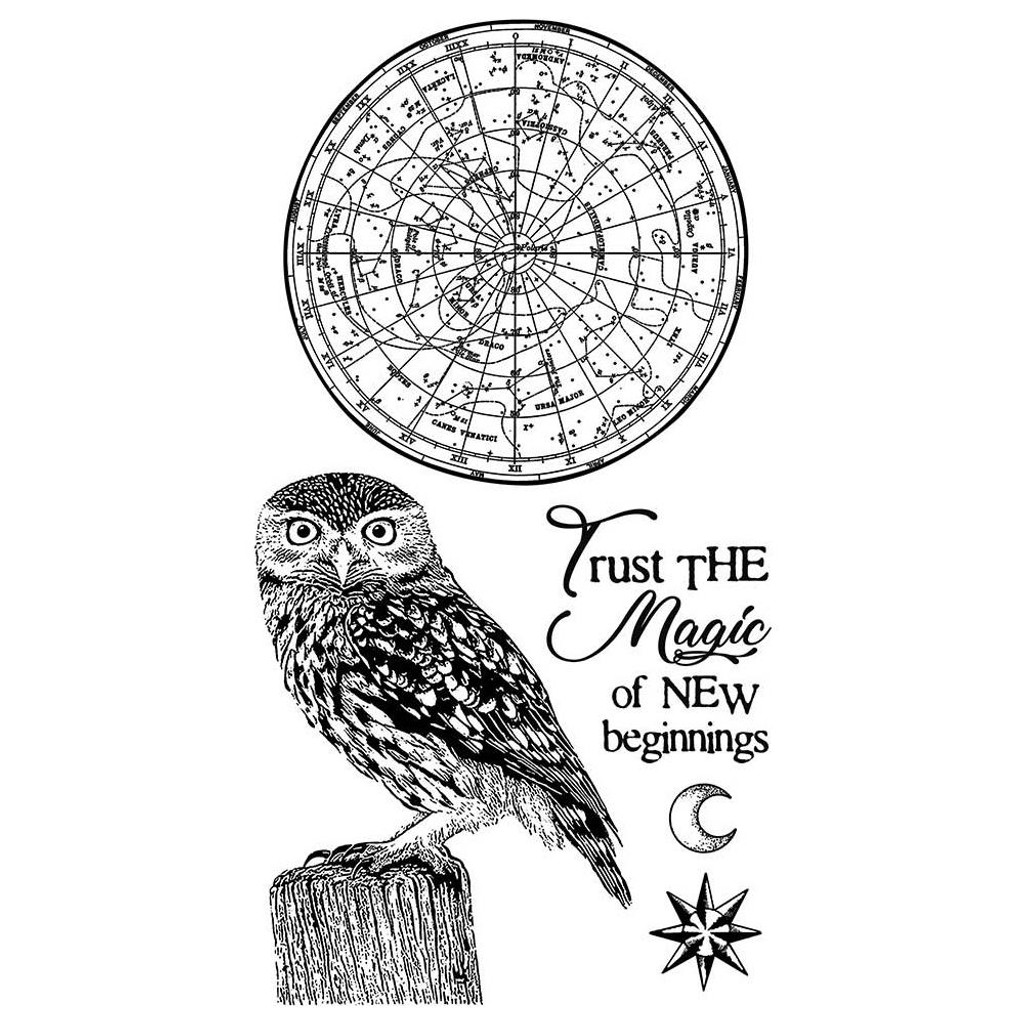 """Stamperia - Stamperia Cling Stamp 5.90""""X7.87"""" -  Cosmos Owl (WTKCCR05)"""