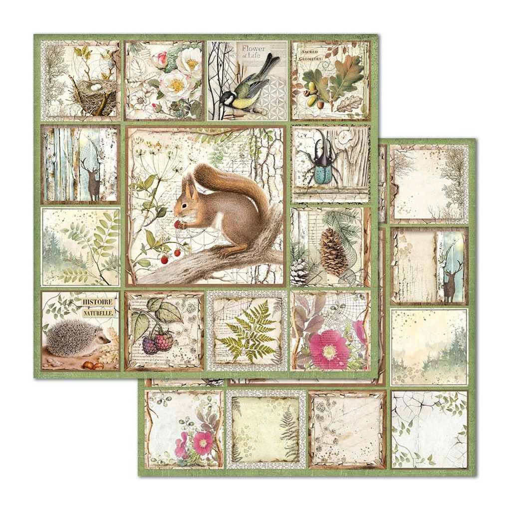 Stamperia - Double-Sided Cardstock 12x12 - Framed Squirrel (SBB655)